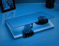 Art privacy sml